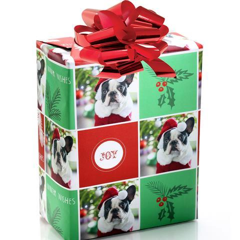 personalized puppy holiday wrapping paper