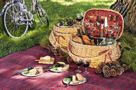 Picnic basket spread in forest