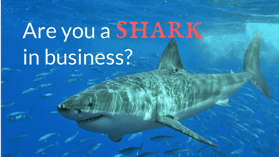Are you a shark in business?